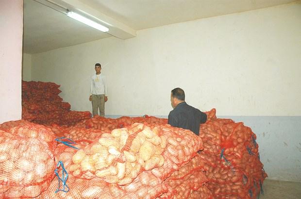 Pomme de terre d'arrière saison : production de 1,5 million à l'échelle nationale